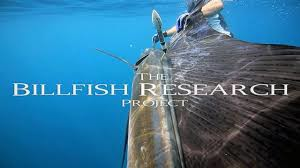 billfishresearch