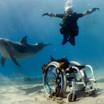 http://www.whitedolphindc.com/en/trips-2/diving-with-handicap/